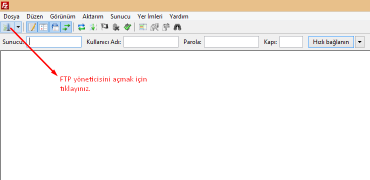 plesk95_ftp1